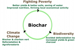 Biochar-fighting poverty