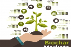 Trevor_Richards-Biochar-Markets
