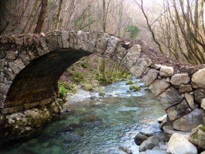ponte21