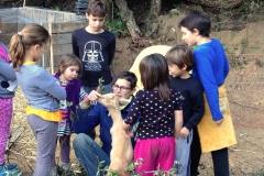 foto-niños-y-cabras-para-pag-web
